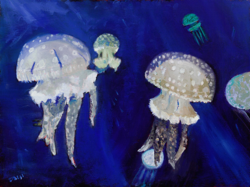 Jelly-Fish-Judy-Stach-web1100
