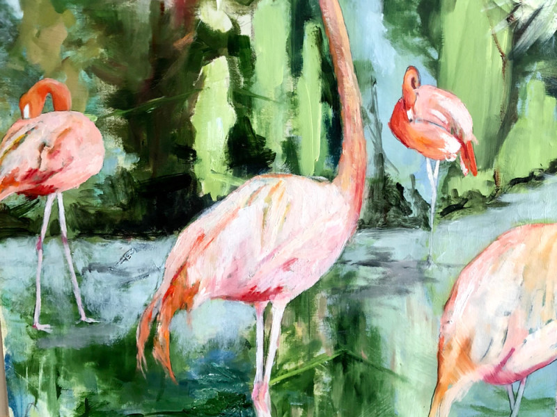 flamingos-1000